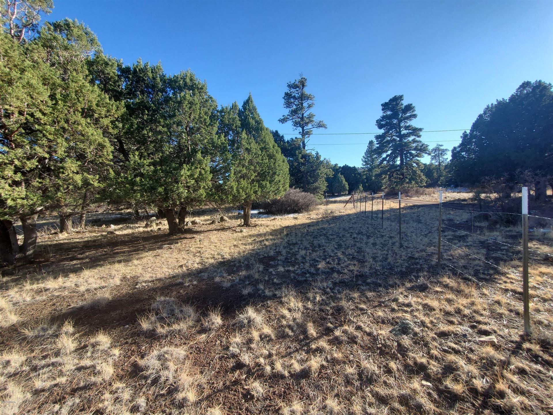 Photo for TBD CR N4035, Greer, AZ 85927 (MLS # 233025)