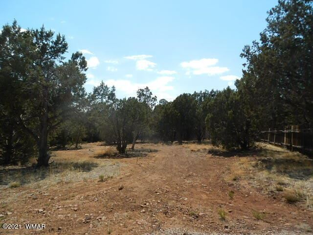 Photo for TBD 6th Place, Show Low, AZ 85901 (MLS # 236028)