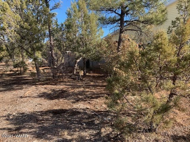 Photo for TBD N Canyon Loop, Show Low, AZ 85901 (MLS # 234032)
