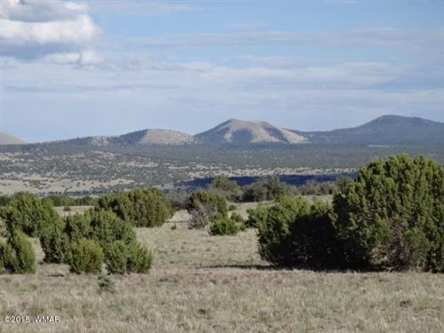 Photo of TBD N ACR 3149, Vernon, AZ 85940 (MLS # 231050)