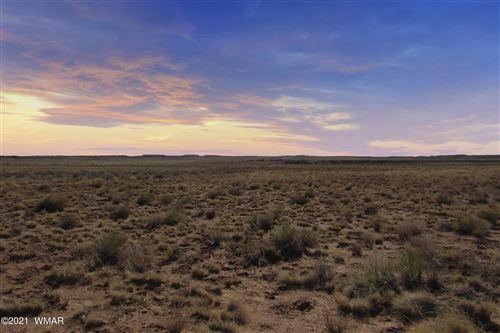 Photo of 0 Power Line Road, Woodruff, AZ 85942 (MLS # 238054)