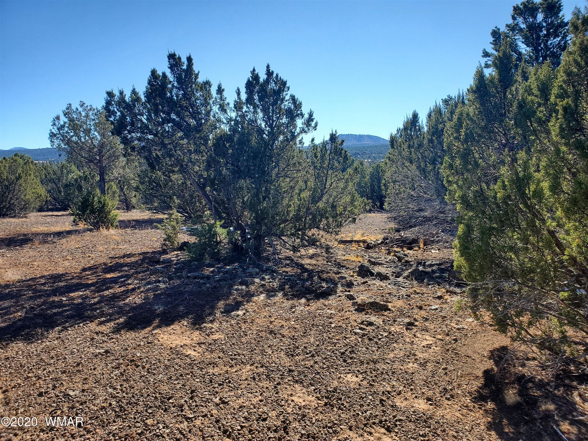 Photo for 22 N 3085, Vernon, AZ 85940 (MLS # 233055)