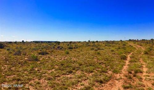 Photo of 8895 Hansa Trail, Snowflake, AZ 85937 (MLS # 228064)