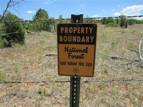 Photo of 5131 State Route 260, Clay Springs, AZ 85923 (MLS # 231064)