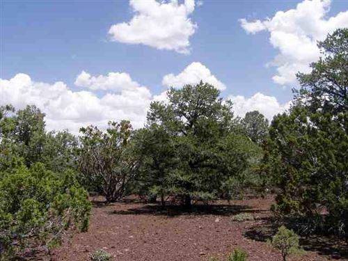 Photo of lot 23 N Mountain Pine Road, Vernon, AZ 85940 (MLS # 234066)