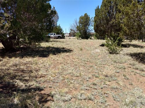 Photo of 16 County Road 5099, Concho, AZ 85924 (MLS # 230087)