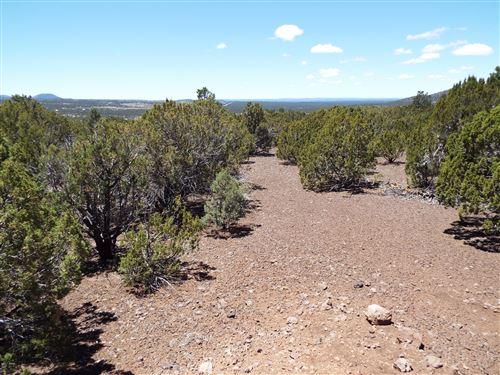 Photo of 45 County Road 8140, Concho, AZ 85924 (MLS # 231092)