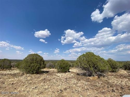 Photo of 2157 Sitgreaves Ranch Road, Show Low, AZ 85901 (MLS # 236099)