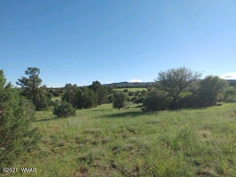 Photo of 6562 Frost Ranch Road, Burton, AZ 85934 (MLS # 237110)