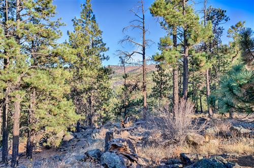 Tiny photo for #65 CR N1072, Greer, AZ 85927 (MLS # 233131)
