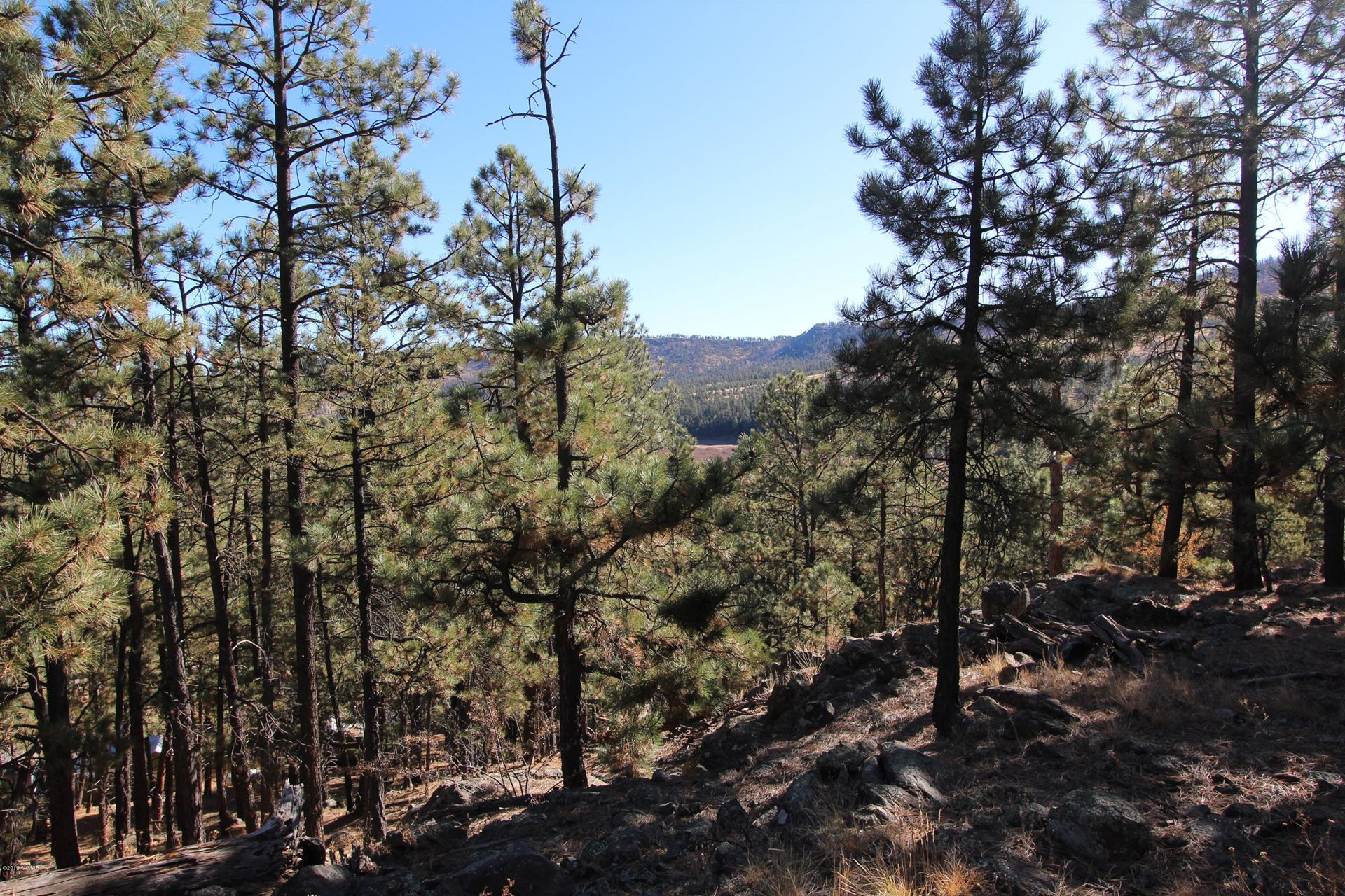 Photo for #65 CR N1072, Greer, AZ 85927 (MLS # 233131)