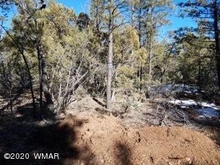 Photo of 4410 W Rim Road, Lakeside, AZ 85929 (MLS # 228137)