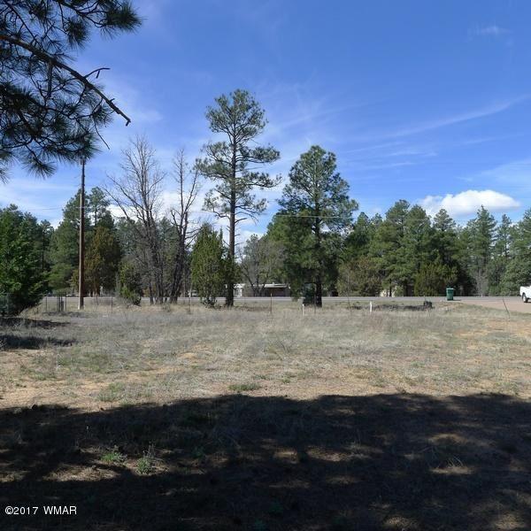 Photo for 961 N Clark Road, Show Low, AZ 85901 (MLS # 233145)