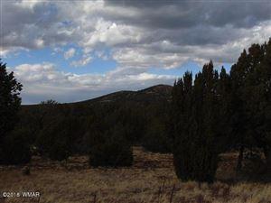 Photo of TBD 101 Puff Trail Cedar Ridge Lot 101, Vernon, AZ 85940 (MLS # 218153)
