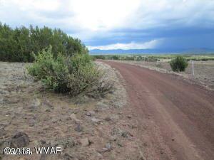 Photo of 0 Lot 011D Big Six Ranches, Vernon, AZ 85940 (MLS # 233160)