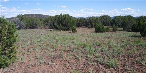 Photo of 92 County Road N3331, Vernon, AZ 85940 (MLS # 230163)