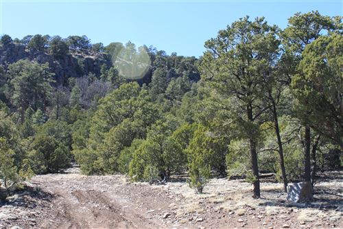 Photo of TBD COUNTY ROAD 2112, Nutrioso, AZ 85932 (MLS # 229170)