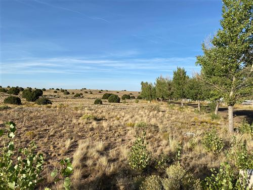 Photo of Lot 4 Taylor Farms, Taylor, AZ 85939 (MLS # 232200)