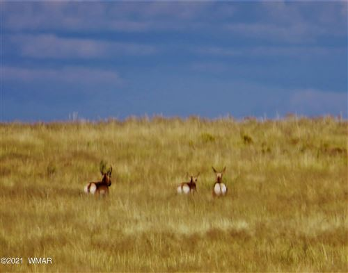 Photo of Arizona Rancheros #118 Lots 2 & 3, Holbrook, AZ 86025 (MLS # 236220)