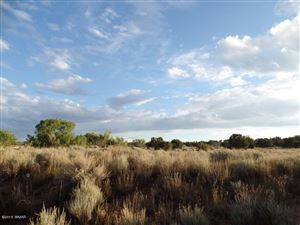 Photo of TBD TBD, Snowflake, AZ 85937 (MLS # 227224)