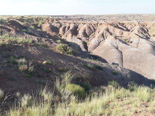 Photo of TBD 22.5 Acres Coyote Rd, Holbrook, AZ 86025 (MLS # 230252)