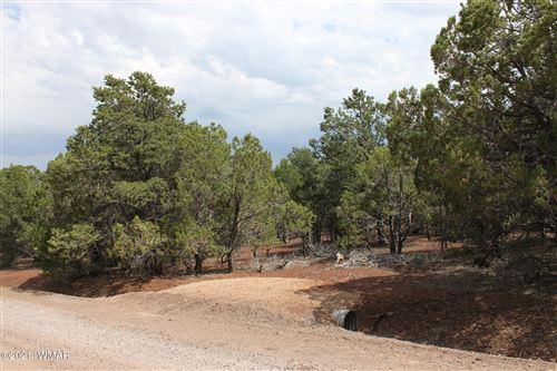 Photo of 6 Co Rd 3183, Vernon, AZ 85940 (MLS # 236258)