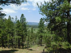 Photo of Lot #1 TBD CR N2277, Nutrioso, AZ 85932 (MLS # 221288)
