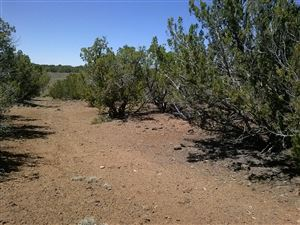Photo of 16 CR 8026, Concho, AZ 85924 (MLS # 226289)