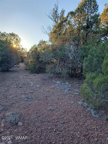 Photo of TBD Preston Way Lot 024B, Pinedale, AZ 85934 (MLS # 233319)