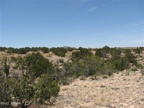 Photo of 546 Flat Bush Road, Heber, AZ 85928 (MLS # 236321)