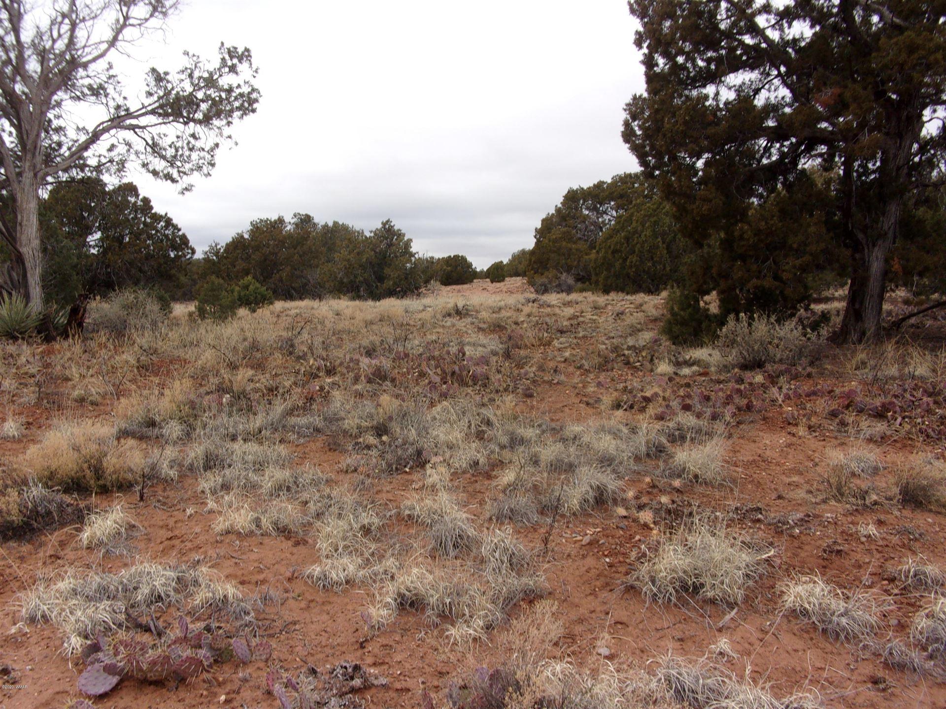 Photo for 4102 Apache Road, Snowflake, AZ 85937 (MLS # 228323)
