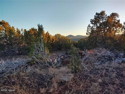 Photo of 25 County Road N3319, Vernon, AZ 85940 (MLS # 235325)