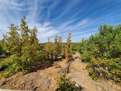 Photo of TBD White Cloud Rd, Pinedale, AZ 85934 (MLS # 232327)