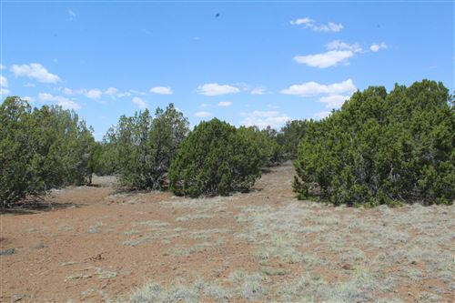Photo of TBD N8178, Concho, AZ 85924 (MLS # 235330)