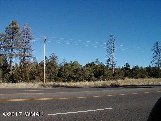 Photo of 2911 Highway 260, Overgaard, AZ 85933 (MLS # 229331)