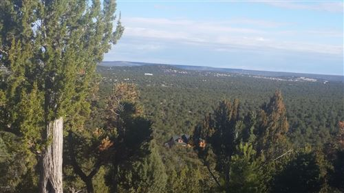 Photo of 51 N County Road 8144 Road, Vernon, AZ 85940 (MLS # 235352)