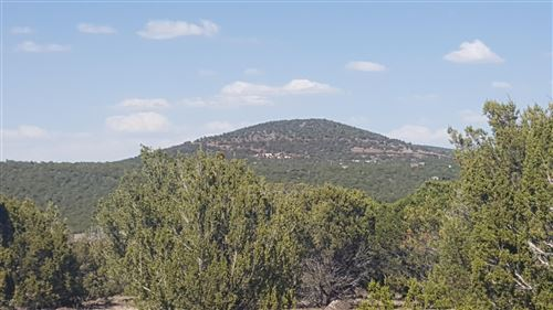 Photo of 44 ACR N3071, Vernon, AZ 85940 (MLS # 234353)