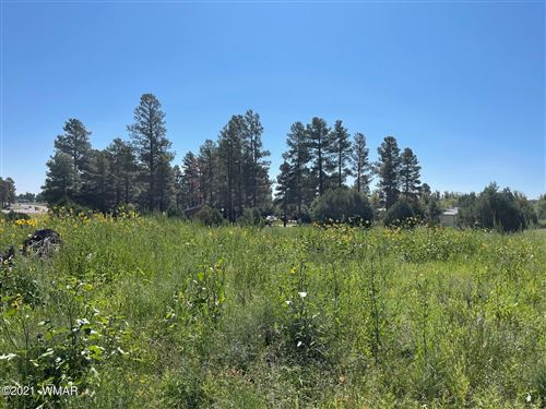 Photo of 2205 State Route 260, Overgaard, AZ 85933 (MLS # 237371)