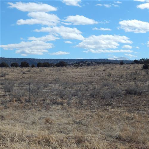 Photo of MM 389.5 E HWY 60, Springerville, AZ 85938 (MLS # 228384)