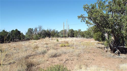 Photo of 1821 Stahl Place, Show Low, AZ 85901 (MLS # 232386)