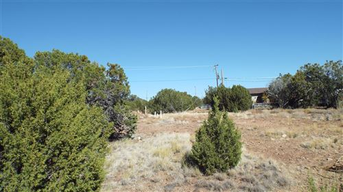 Tiny photo for 1821 Stahl Place, Show Low, AZ 85901 (MLS # 232386)