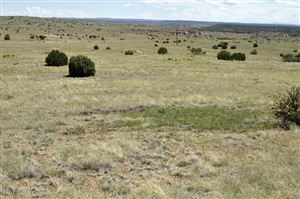 Photo of Lot 99 Taylor Farms #2, Taylor, AZ 85939 (MLS # 221401)