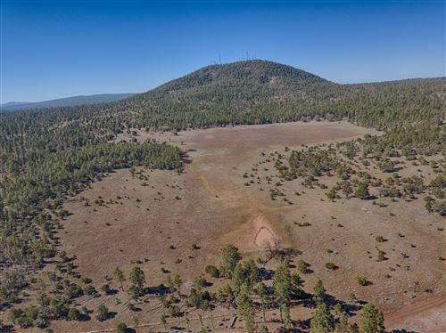 Photo of TBD Panorama Trail, Lakeside, AZ 85929 (MLS # 229416)