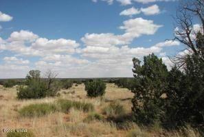 Photo of Sec 19 T15N,R16E,NW4,NW4&SW4,NW4, Heber, AZ 85928 (MLS # 233426)
