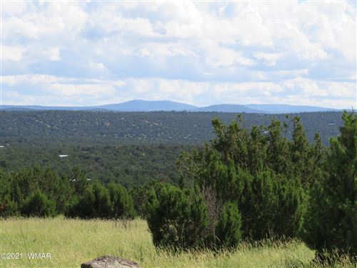 Photo of 5 County Road 8059, Concho, AZ 85924 (MLS # 237439)