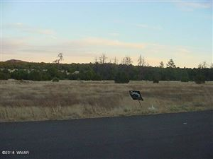 Photo of 801 N 40th St. Airport Industrial Pa, Show Low, AZ 85901 (MLS # 212455)