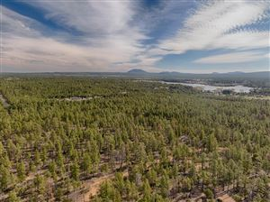 Photo of 3350 W Rim Road, Lakeside, AZ 85929 (MLS # 223476)