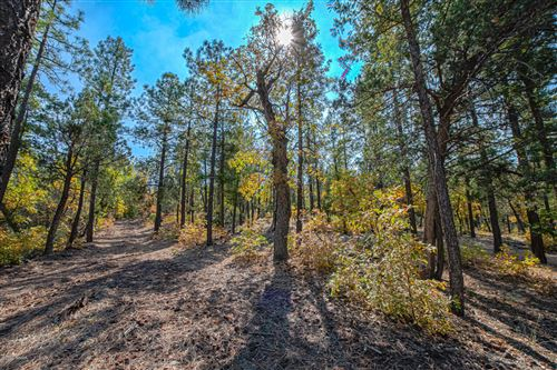 Photo of TBD Off of High Drive, Lakeside, AZ 85929 (MLS # 232495)
