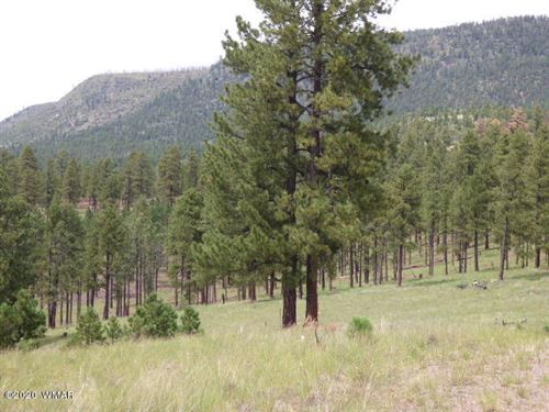 Photo of Lot 14 The  Ranch At Alpine, Alpine, AZ 85920 (MLS # 229503)