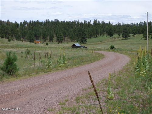 Photo of Lot 16 The  Ranch At Alpine, Alpine, AZ 85920 (MLS # 229507)